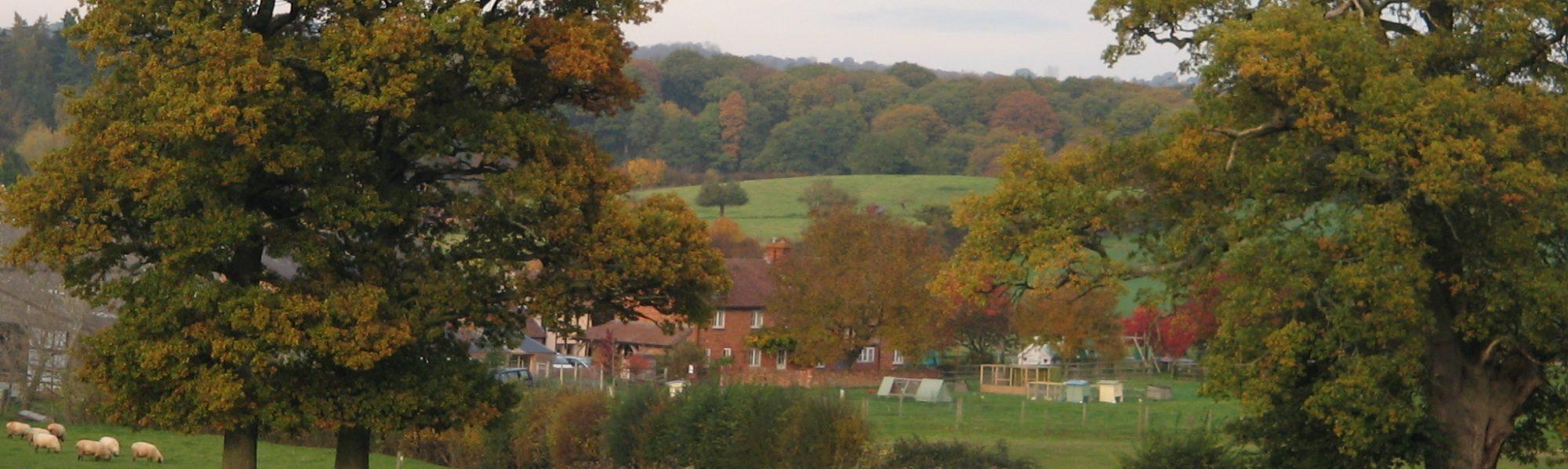 Hansnett Farm